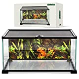 BIOTERIUM Reptile Tank | 20x12x10 Inch Glass Tank for Reptiles | with Terrarium Background | Ideal to Use As Lizard Tank, Snake Cage, and Gecko Enclosure Kit