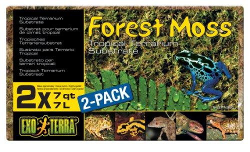 ExoTerraSustratoNaturalForestMoss- Paquete de 2 Unidades x 7 L - Total: 14 L ⭐