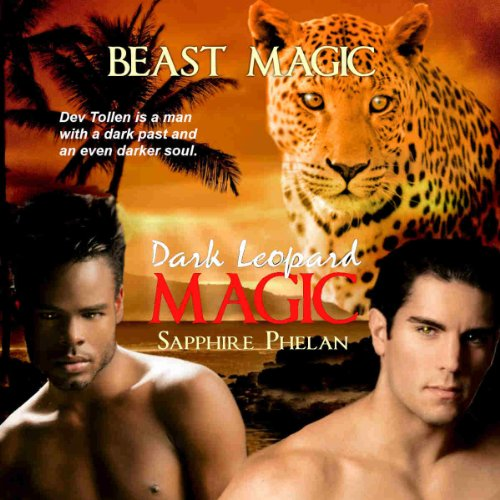 Dark Leopard Magic audiobook cover art