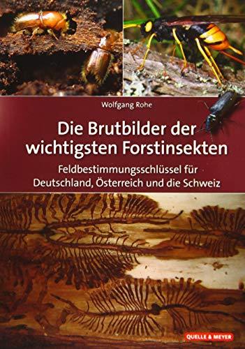 Die Brutbilder der wichtigsten Forstinsekten: Feldbestimmungsschlüssel für Deutschland, Österreich und die Schweiz