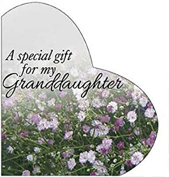 Hardcover A Special Gift Form My Granddaughter Book