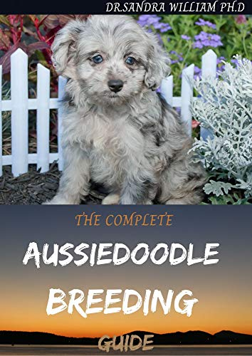 THE COMPLETE AUSSIEDOODLE BREEDING GUIDE : Step By Step Guide In Caring For, Training, Feeding, Socializing, and Loving Your New Aussidoodle (English Edition)