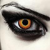 Lenti a contatto colorate arancio per halloween lupo mannaro costume, morbide, non corrett...