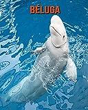 Béluga: Recueil pour Enfants de Belles Images & d'Informations Intéressantes Concernant les Béluga