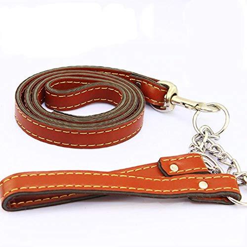 Hjyi Haustier Traktion Armband Armband Halsband großer Hund Lederkombi