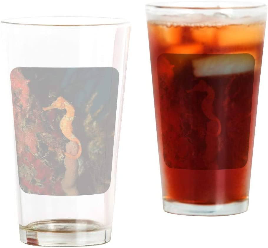 Pint Drinking Glass Holding Coral Max New item 55% OFF Seahorse