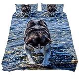 Juego de funda de edredón para perro, Husky Water Animal Friend Pet Edredón de cama suave de 3 piezas tamaño Queen con 2 fundas de almohada hipoalergénicas, suave y cómoda cremallera