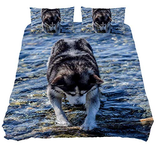 Duvet Cover Set Dog Husky Water Animal Friend Pet Comforter Bedding Sets Soft 3 Piece Queen Size with 2 Pillow Shams Hypoallergenic Soft and Comfortable Zipper