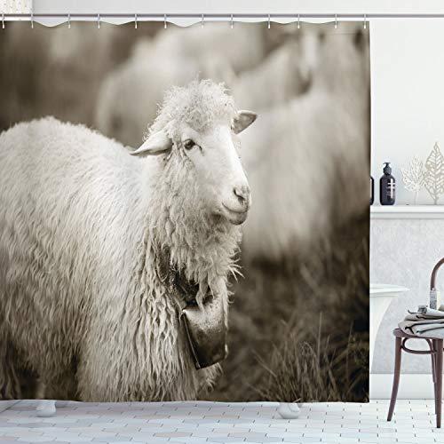 ABAKUHAUS Schaf Duschvorhang, Flaumige Wooly Schafherde, mit 12 Ringe Set Wasserdicht Stielvoll Modern Farbfest & Schimmel Resistent, 175x180 cm, Mehrfarbig