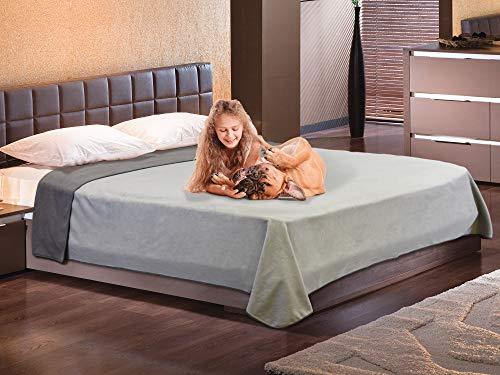 Pawsse Manta impermeable para perros y mascotas, manta impermeable para sofá, cachorro, gato, forro polar, cama, asiento de coche, protección para muebles, grande, 203 x 229 cm