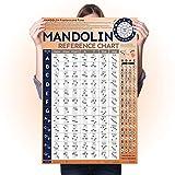 Mandolin Chord Chart Laminated Popular Chords, Mandolin Fretboard Notes and Circle of Fifths, Useful...