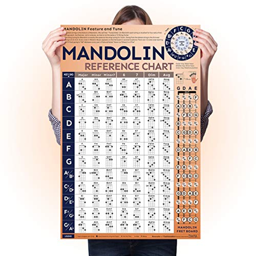 Mandolin Chord Chart Laminated Popular Chords, Mandolin Fretboard Chart Easy to Read and Learn, Useful for Mandolin Beginner and Teacher, Large Mandolin Chord Poster for Wall Art