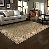 SUPERIOR Heritage 4' x 6' Green Area Rug, Contemporary Living Room & Bedroom Area Rug, Anti-Static and Water-Repellent for Residential or Commercial Use, 4-feet by 6-feet