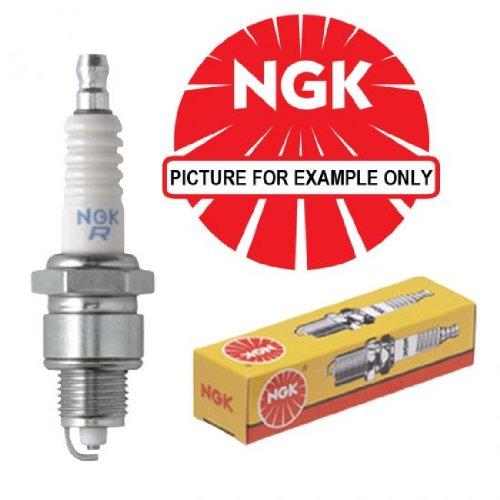 ngk spark plugs NGK33 Blister PFR6Q Bougies Set de 4