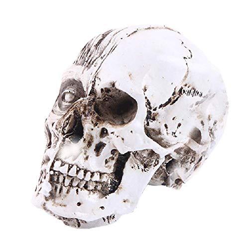 La decoración plástica cráneo Humano, Personalidad Realista Resina simulado cráneos de la Cabeza de Juguete Modelo Hecho a Mano for Ministerio de Ciencia Juguetes educativos WTZ012