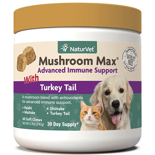 NaturVet Mushroom Max Advanced Immune Support Dog Supplement – Helps Strengthen Immunity  Overall Health for Dogs – Includes Shitake Mushrooms  Reishi  Turkey Tail – 60 Ct.