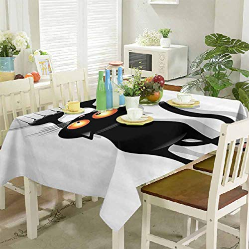 DRAGON VINES Tablecloth Clip Angry Furry House Cat Scratching Curtains Best Friend Companion Happy Paws Artsy Image Outdoor Picnic Indoor and Outdoor Buffet Tables 60 x 60 inch