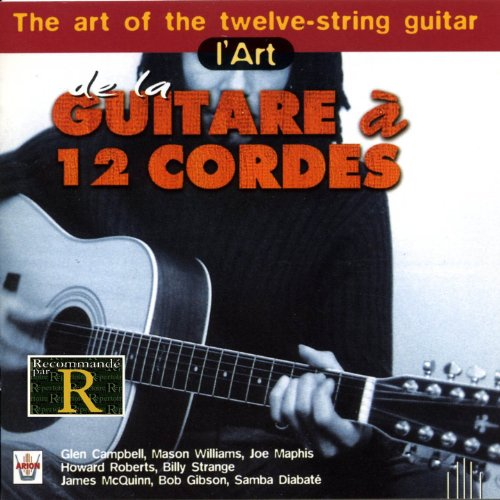 The Art of...-die 12-Saitige Gitarre