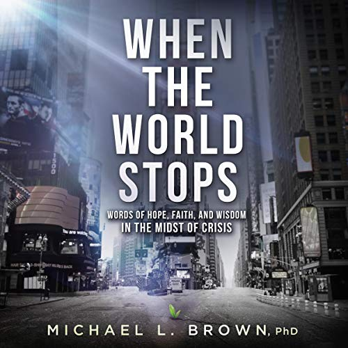 When the World Stops audiobook cover art