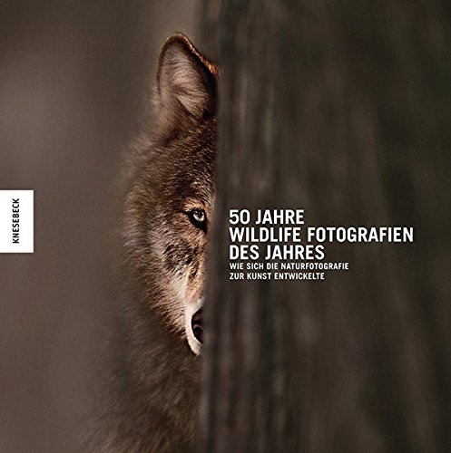 50 Jahre Wildlife Fotografien des Jahres: Wie sich die Naturfotografie zur Kunst entwickelte