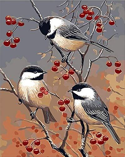 Xpboao Pintar por números para Adultos - Pájaro en el Cerezo - Kit de Pintura al óleo sobre Lienzo - para Regalos de decoración de la Pared del hogar - 40x50cm - Sin Marco