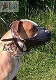 Champion /L&J Pets UK Muselière solide en cuir véritable pour chien American Staffordshire Terrier Amstaff (A1, Noir)