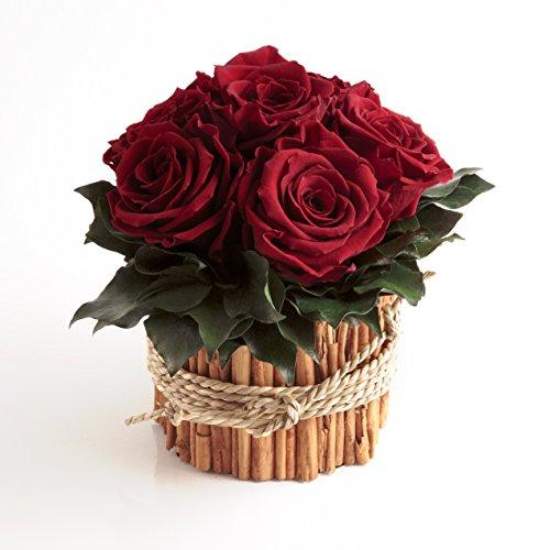 Rosengesteck 6 konservierte Rosen lang haltbar 3 Jahre/Blumengesteck/Bauernhaus/Blumen Deko/Tisch von ROSEMARIE SCHULZ® Heidelberg (Dunkelrot)