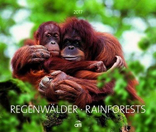 Kalender 2017 Fotokalender Regenwälder Wandkalender 46 x 39 cm Querformat Posterkalender