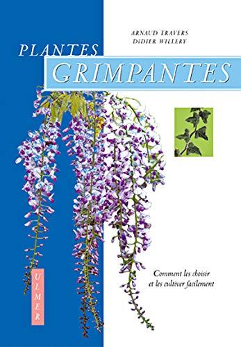 Plantes grimpantes : Comment les choisir et les cultiver facilement