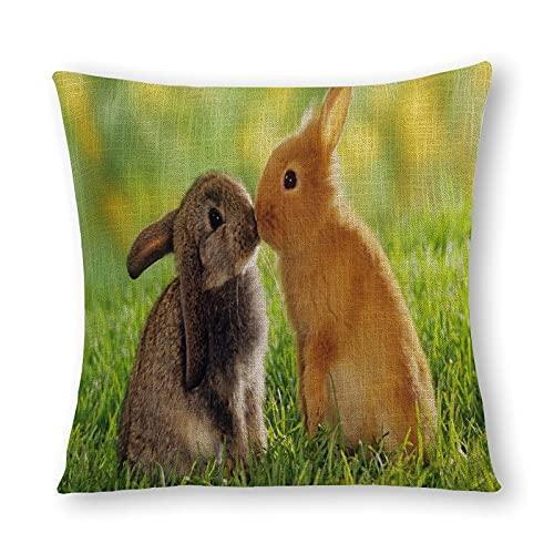 Funda de almohada de cáñamo de imitación con diseño de conejitos de bebé, 50 x 50 cm x 50 cm
