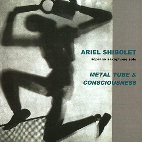 Ariel Schibolet