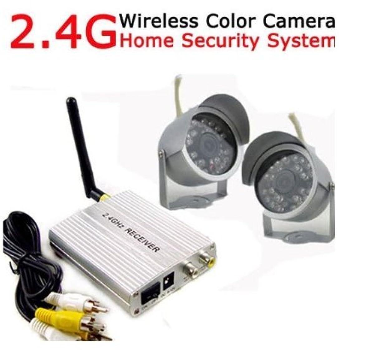 新しい意味スパイラルヒゲクジラ2個のカメラとホーム屋外監視セキュリティ2.4GワイヤレスカラービデオカメラCCTVシステム lsmaa