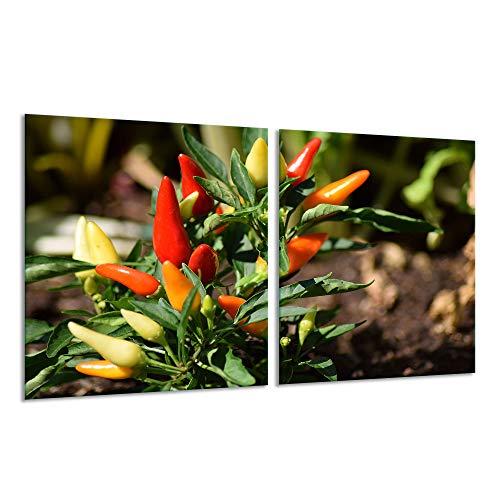 Fornuis afdekplaat Ceranfeld 2-delig 2x40x52 Paprika Kleurrijke kookplaten inductie