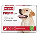 Beaphar® FIPROtec® Kill Flea Ticks Spot On Drop Treatment Protection for Small Medium Large XL Dogs Puppies (6 Treatments, Dog (Large 20-40kg))