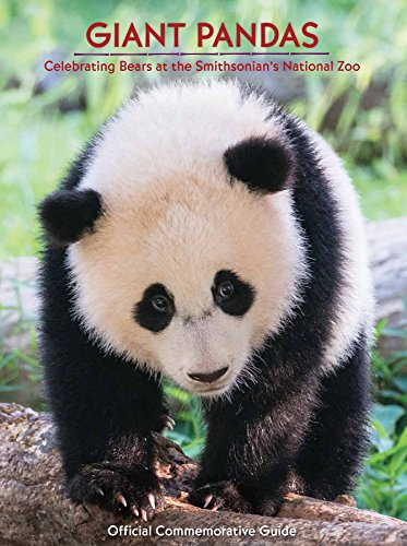 Giant Pandas - Celebrating Bears at the National Zoo