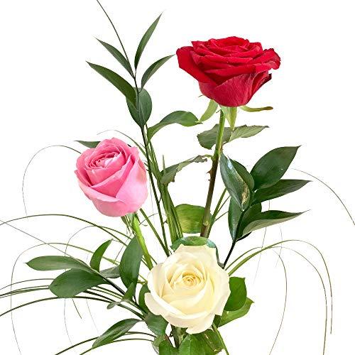 Rosenstrauß mit 3 langstielige Rosen - Inklusive gratis Vase