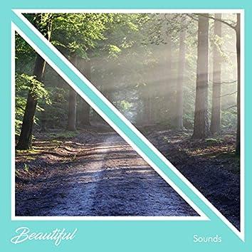 #16 Sonidos Bellos para Aclarar Tu Mente