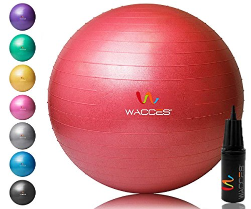 Wacces Total Body Balance Ball Kit, Fitness Exercise Stability Ball with Dual Action Pump