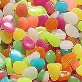 Xdefkoloe58223 100 piedras luminosas alimentadas por la luz solar, piedras para acuarios, decoración luminosa para acuarios, pasajes peatonales, jardines, caminos, plantas de apartamento (12 colores)