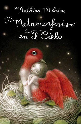 Metamorfosis En El Cielo Metamorphosis In The Sky Spanish Edition By Mathias Malzieu 2011 09 02
