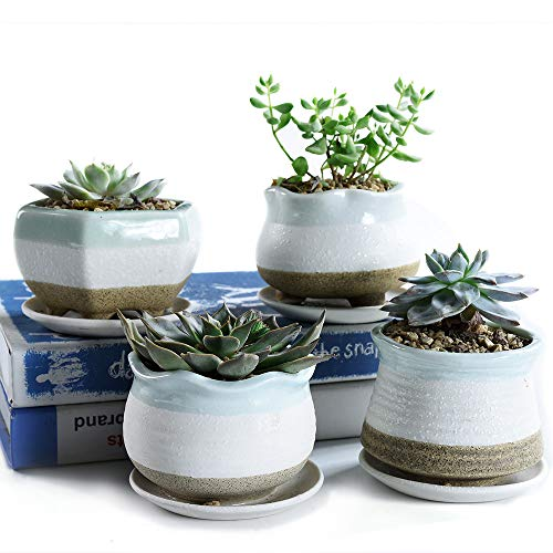 SUN-E 3.54 Inch Snow Frosted Surface Ceramic Pot Serial Set Full Set Succulent Plant Pot Cactus Plant Pot Flower Pot Container Planter with Display Tray Drainage 4 in Set