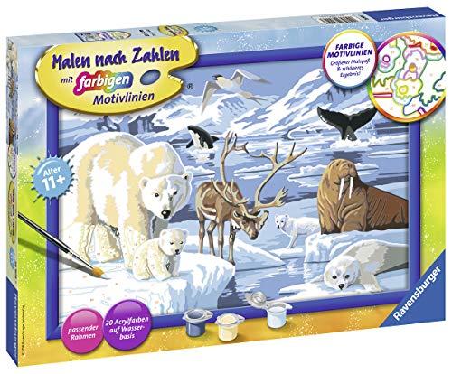 Ravensburger Malen nach Zahlen 28909 - Tiere der Arktis - Für Kinder ab 11 Jahren