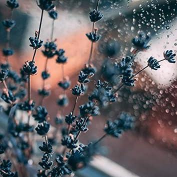Sleepy Sounds: Asleep In The Rain
