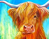 YHZSML Diamond Painting Kits For Kids Full Drill,Highland Cow Diamond Painting Kits 30x40cm,Rhinestone Embroidery Pictures Cross Stitch Art Crafts