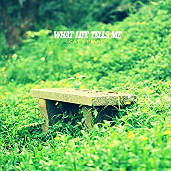 What life tells me