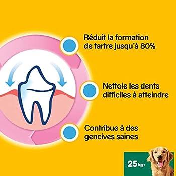 Pedigree Dentastix - Friandises pour grand chien, 56 bâtonnets à mâcher pour l'hygiène bucco-dentaire (8 sachets de 7 Sticks)