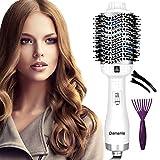 Damie - Secador de pelo 5 en 1 multifunción, cepillo de aire caliente, cepillo para secador de pelo, cepillo de pelo liso para todos los estilos (blanco y plateado)