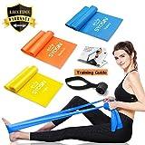 SYOSIN Fitnessbänder Widerstandsbänder Set 3-Stärken