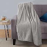 Amazon Basics Weighted Blanket with Minky Duvet Cover - 17lb, 48x72', Dark Grey/Grey
