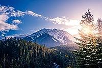 キッズジグソーパズル500ピース Canada Sunlight Snowline Clouds Sky Trees Banff National Park パズル ゲーム パズルパズル ゲームうさぎ パズル大人と子供のための創造的な贈り物家族の楽しいゲーム
